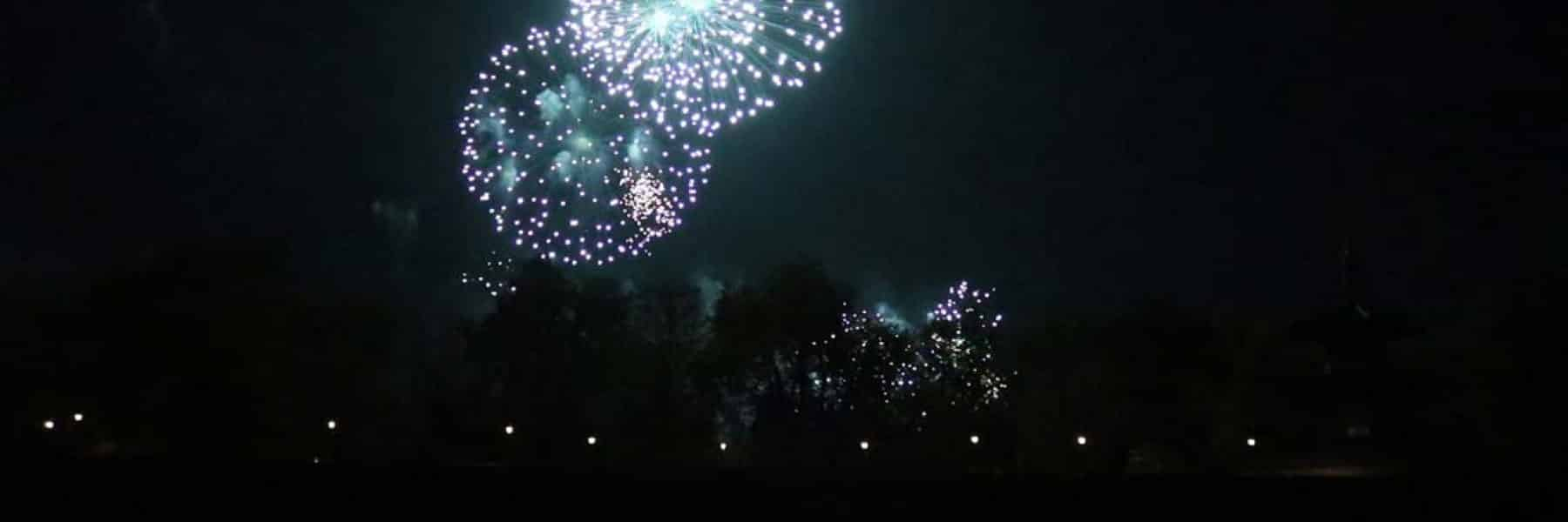 Battersea Park Firework Cruises & Charters | Viscount Cruises